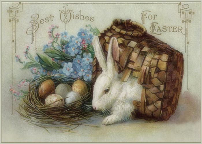 Húsvéti nyúl
